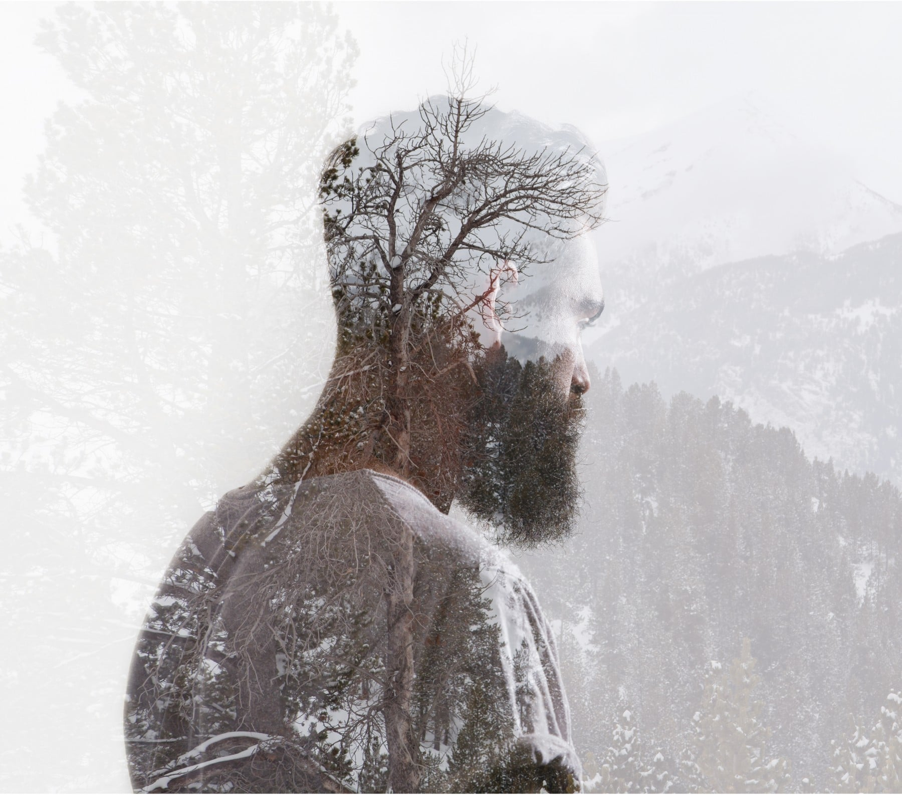 Double color exposure portrait of a bearded guy and tree