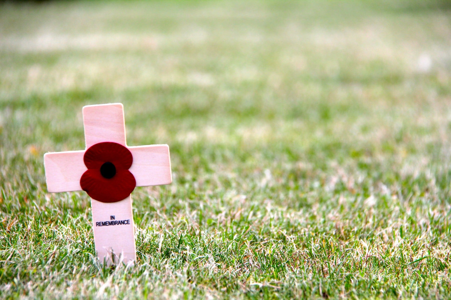 A poppy is on a cross which says 'In remembrance'.