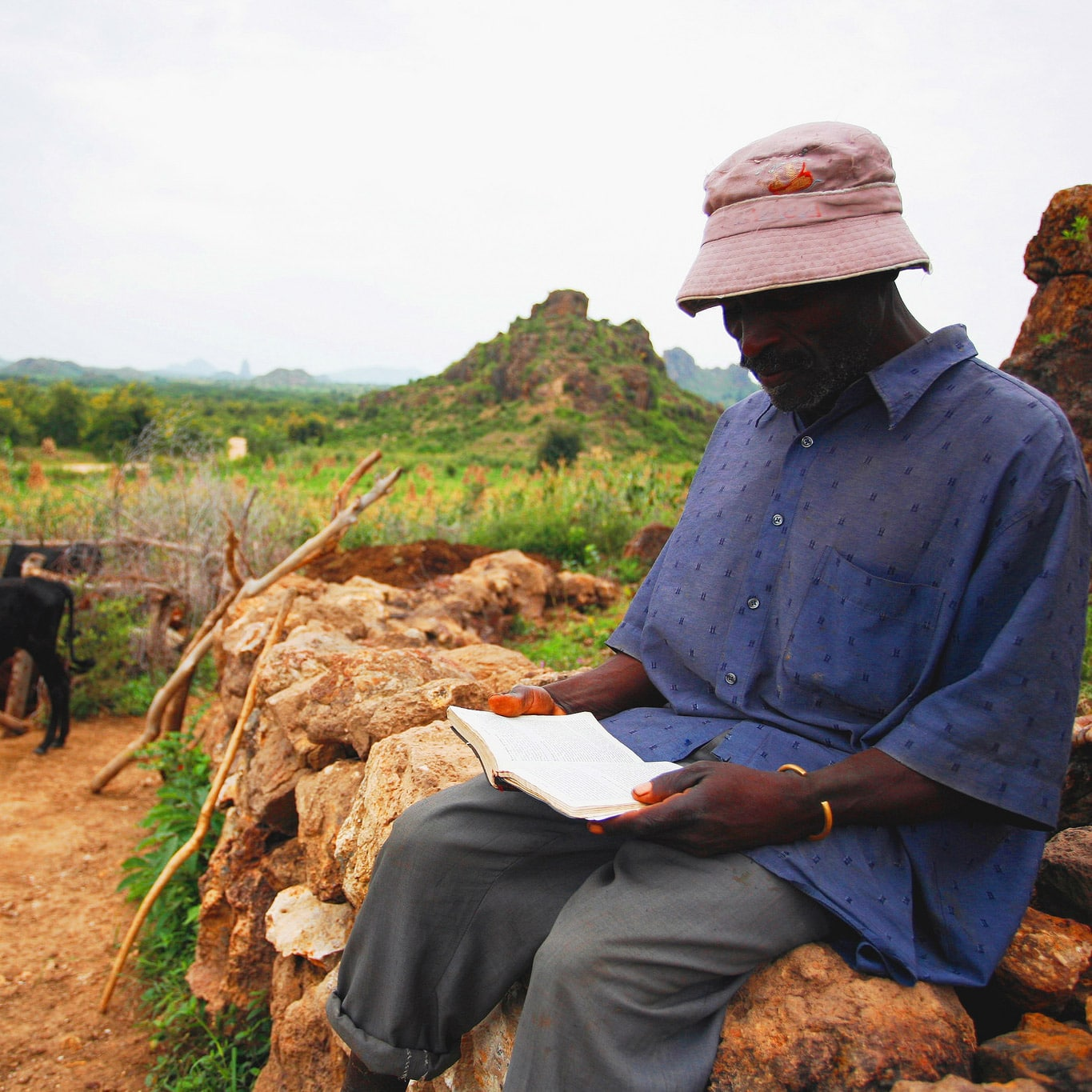 A shepherd in Cameroon reads his Bible